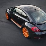 Volkswagen Beetle 2012 Arka Üst